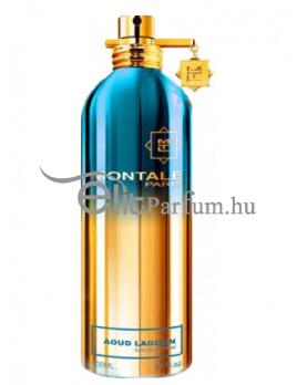 Montale Paris Aoud Lagoon Uniszex Parfüm (eau de parfum) Edp 100ml